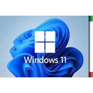 WINDOWS 11 PROFESSIONAL 64BIT DVD OEM X18-45392